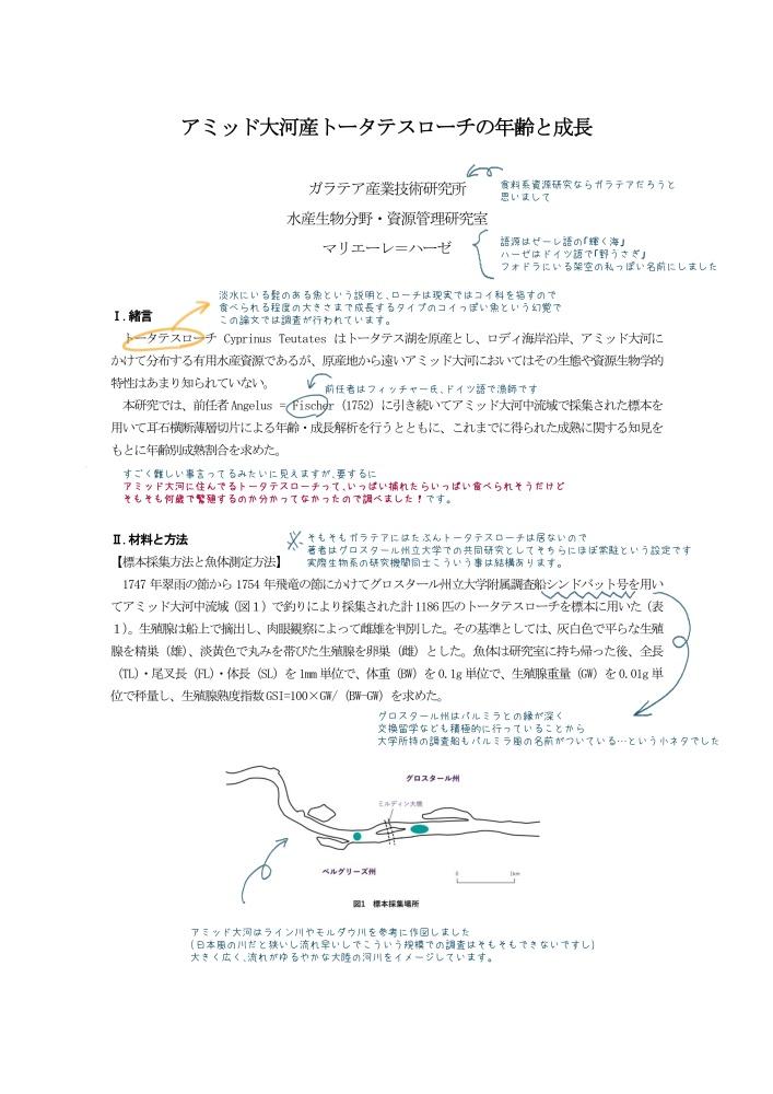 幻覚論文『アミッド大河産トータテスローチの年齢と成長』