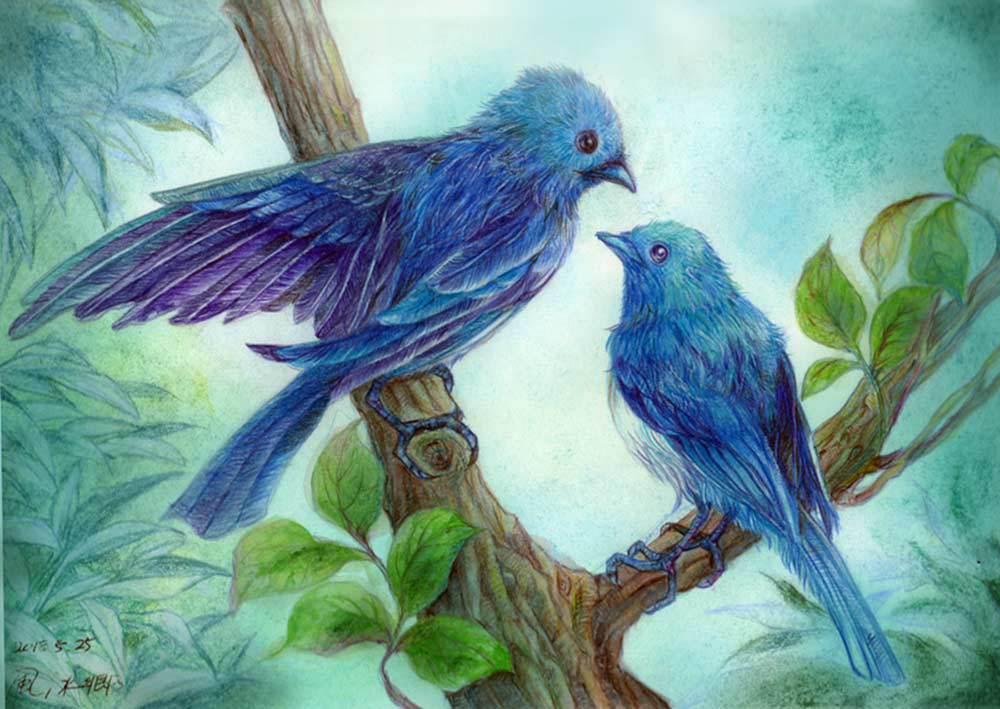 BLUE BIRDS 「此処に家をつくろうか」