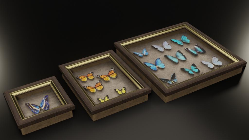 3Dモデル「蝶の標本」