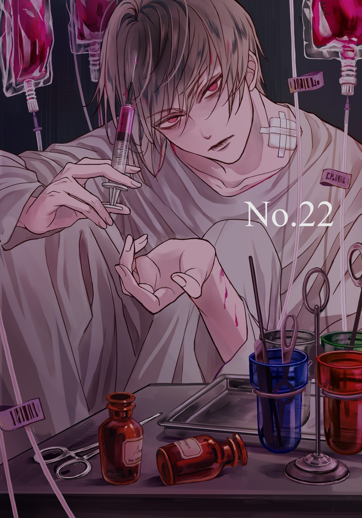 『No.22』フルカラーイラスト集