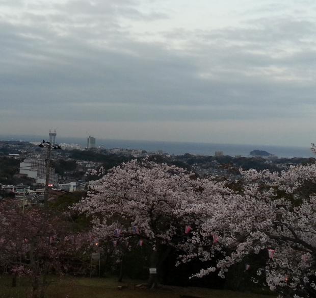 April in wonderland