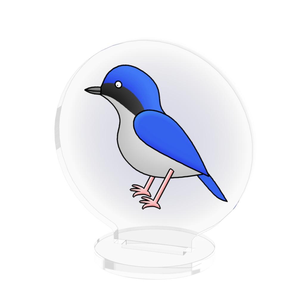 コルリのアクリルフィギュア / Siberian Blue Robin Acrylic Figure