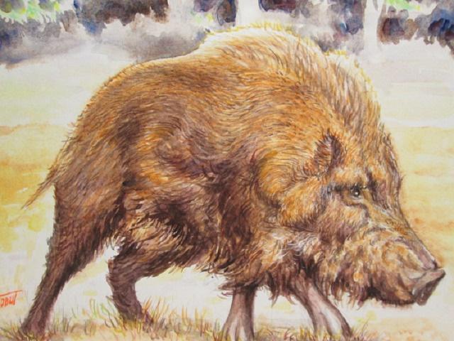 「猪突猛進」