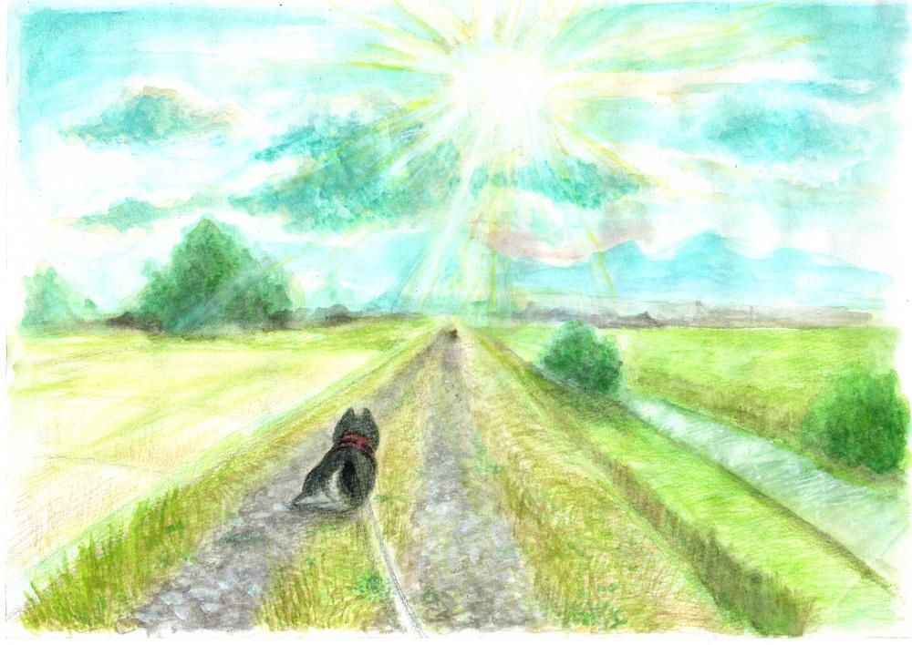 イラスト原画:犬散歩