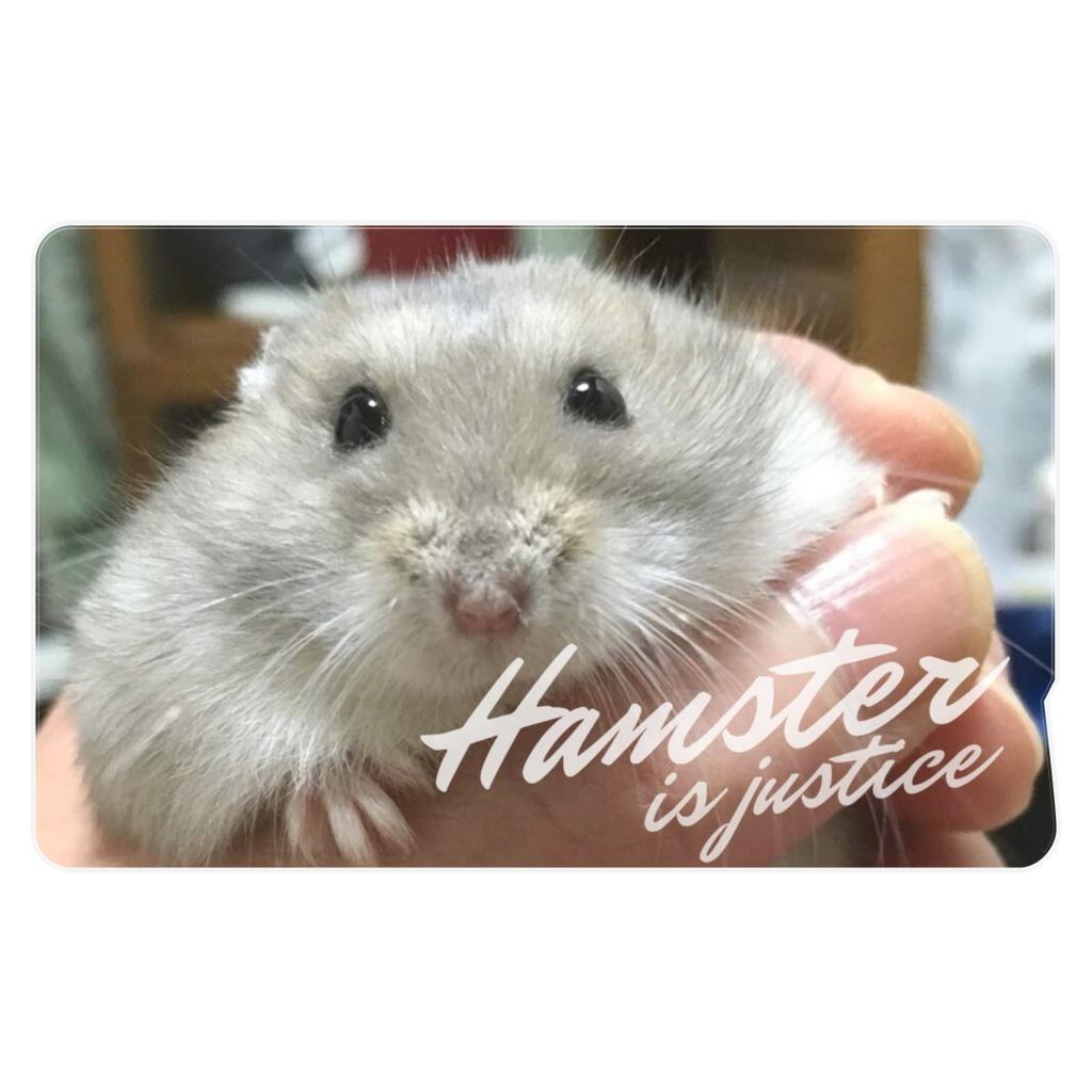 ハムスター たまたま