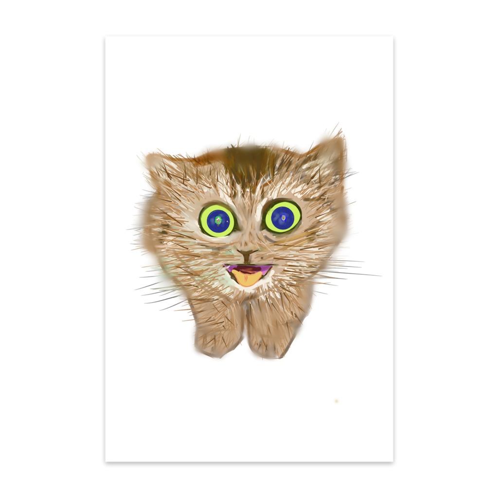 子猫のポストカード