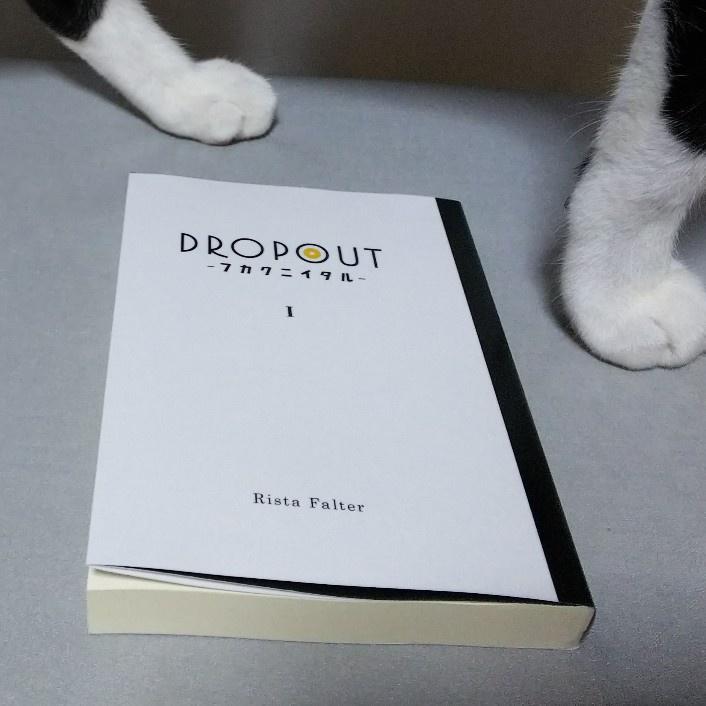DROPOUT-フカクニイタル- Ver.0