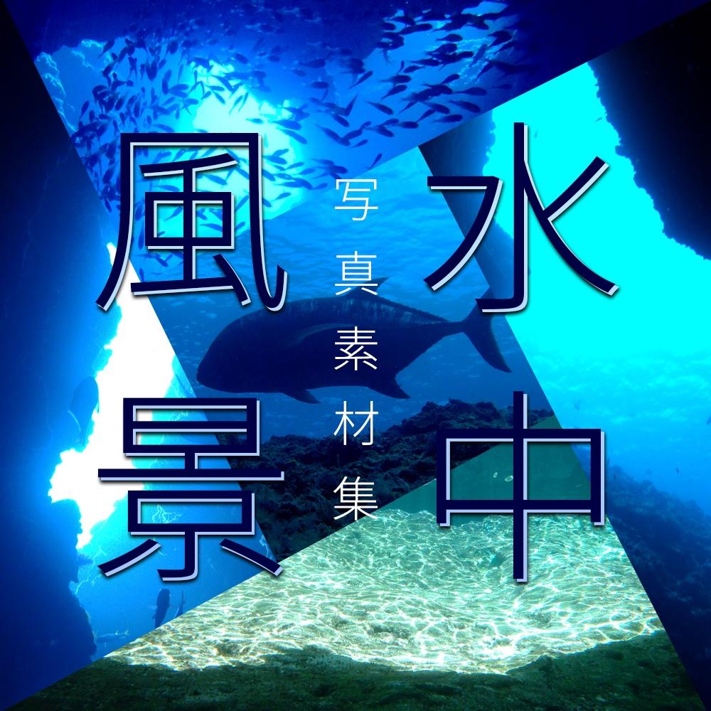 【写真素材集】水中風景【30枚】