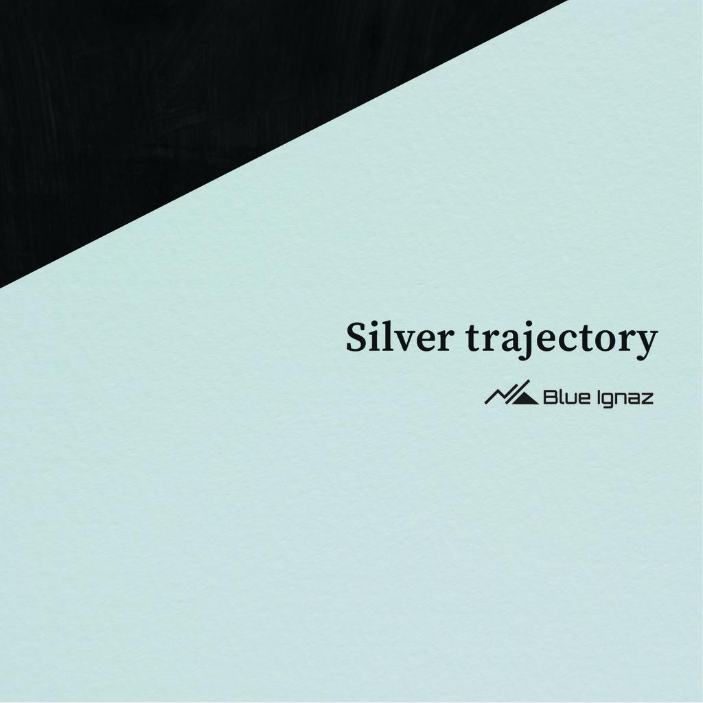 silver trajectory(DL版)