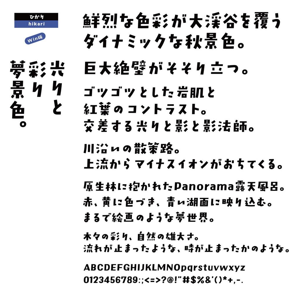 DSひかり Win版