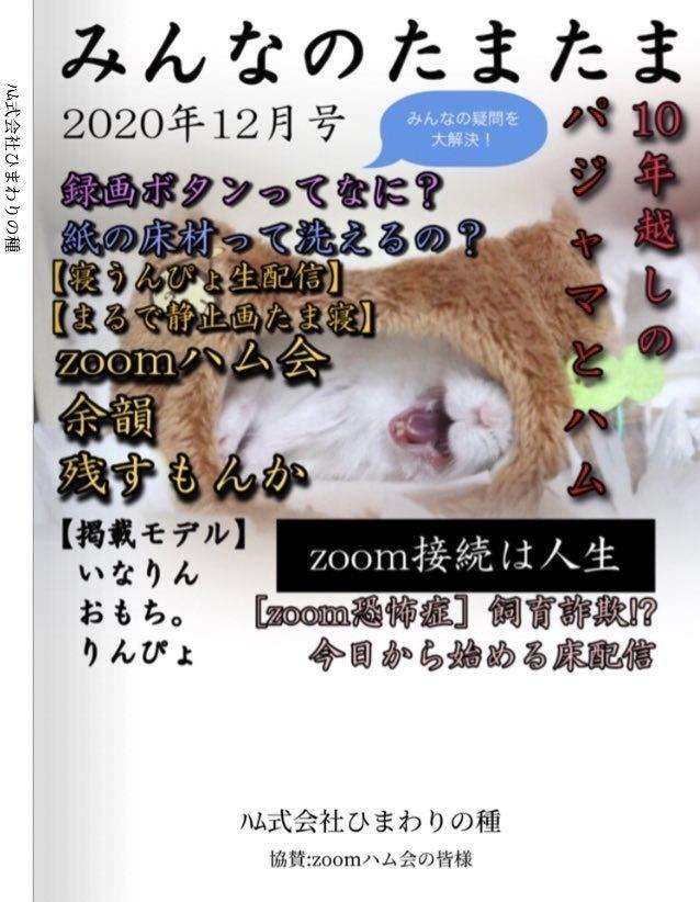 みんなのたまたま2020年12月号 - ハム式会社 ひまわりの種 - BOOTH