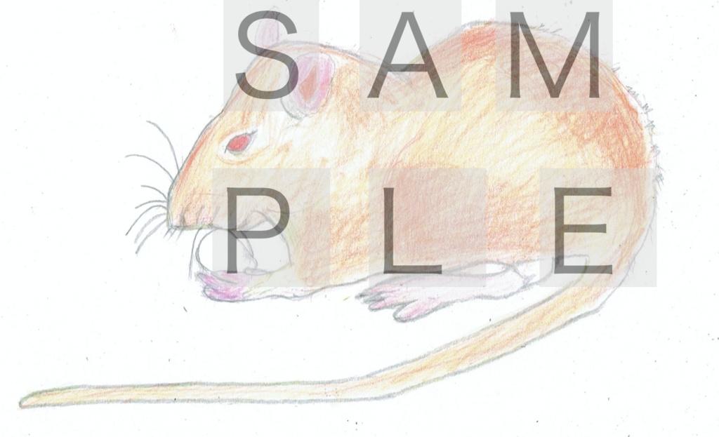 ネズミのデザイン(オレンジ色)