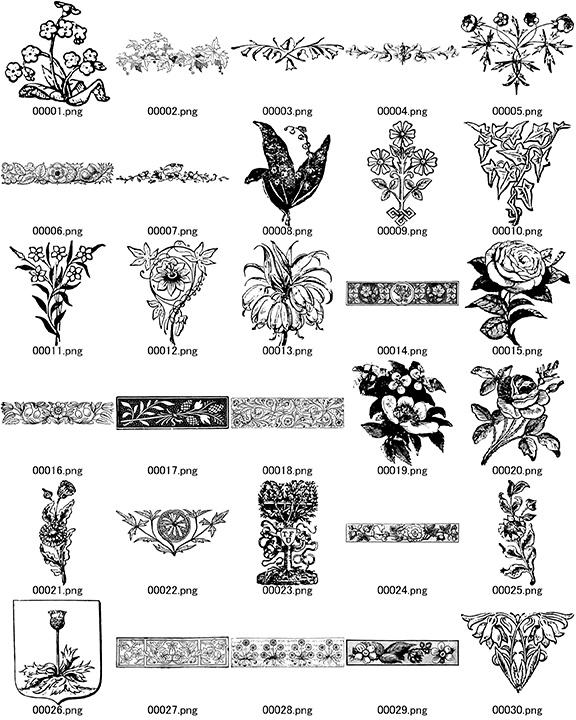 中世風素材「植物、花」30種類