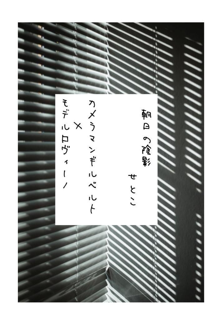 【せかちゅ14】朝日の陰影【普ロマ無配】