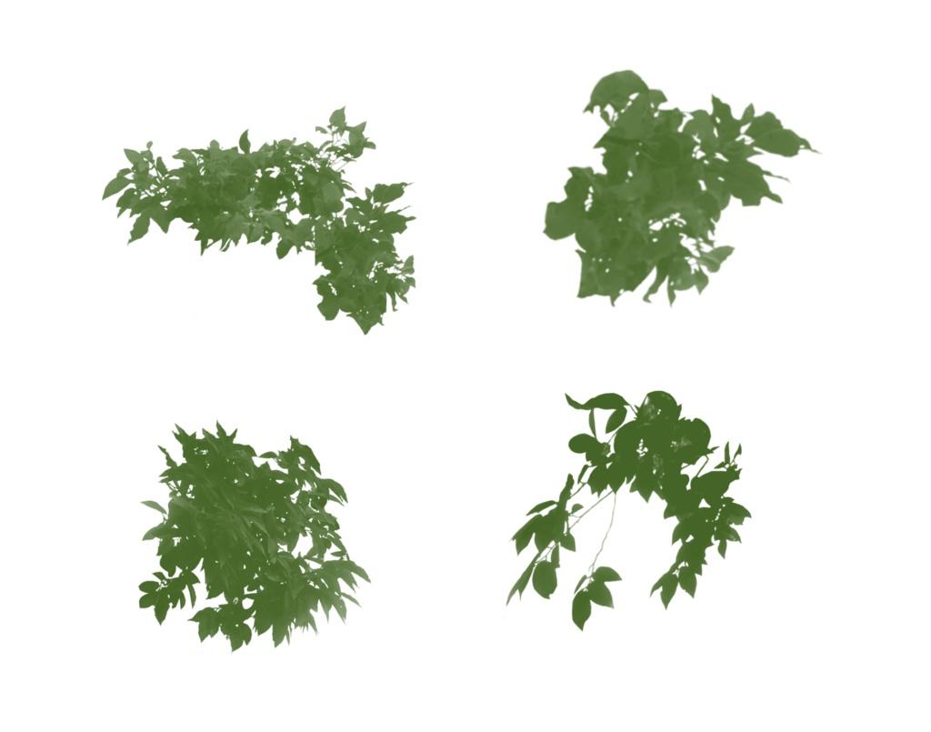 procreate 葉っぱブラシ
