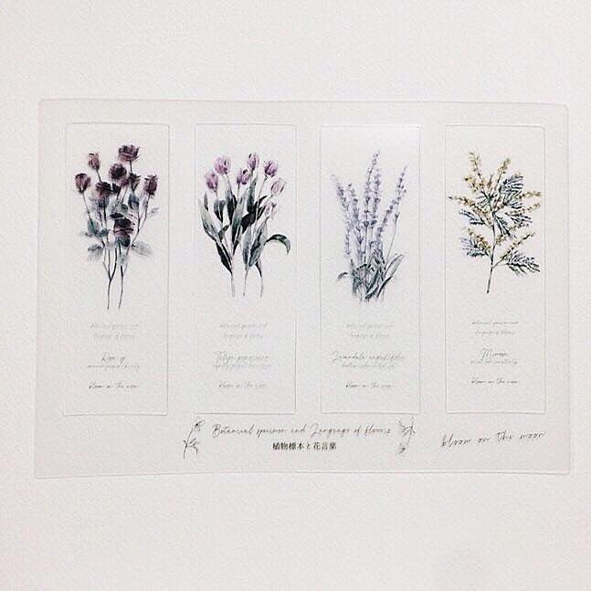 植物標本と花言葉のしおり