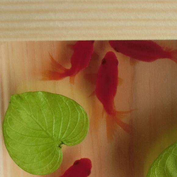 金魚アート 扇 琉金 日本製 還暦祝い 誕生日 結婚 男性 女性 プレゼント ハート クリスマス お正月