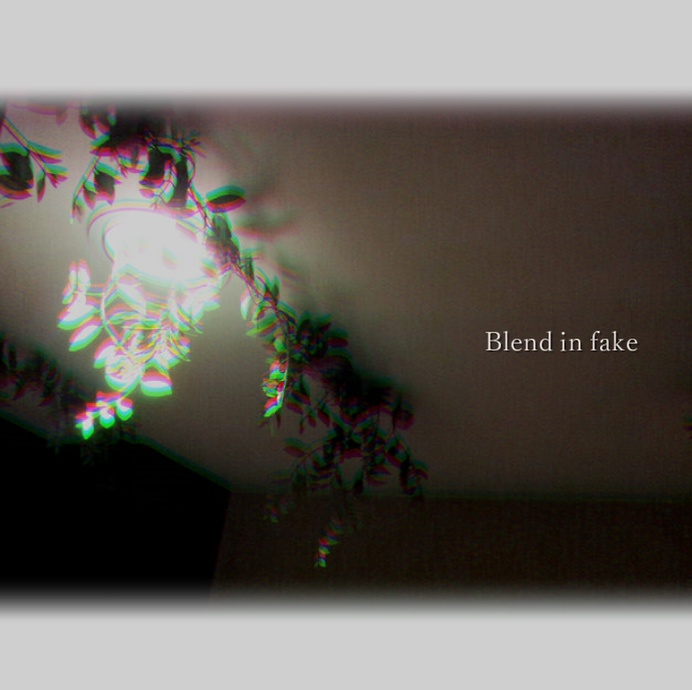 Blend in fake