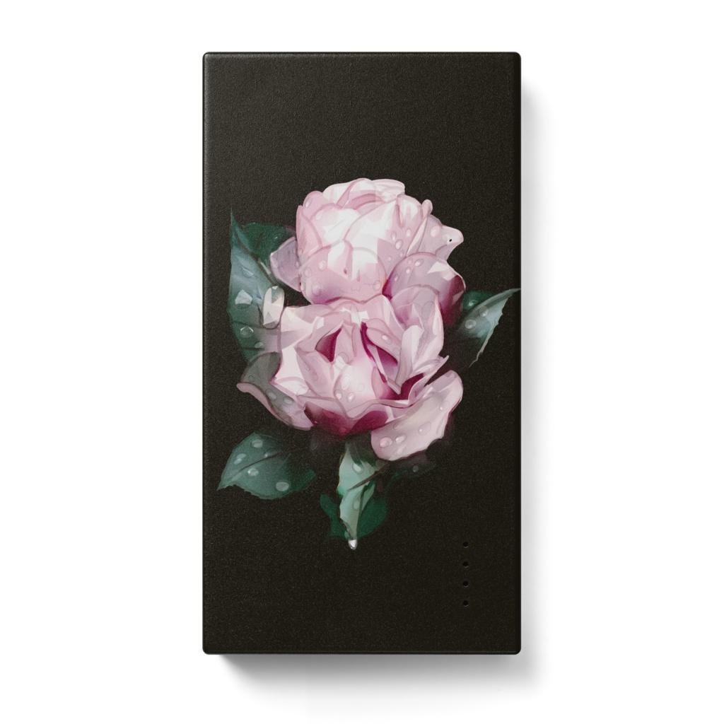 Rainy Roses / MOBILE BATTERY