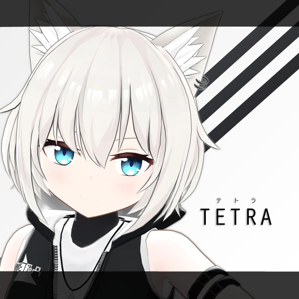 オリジナル3Dモデル「TETRA(テトラ)」