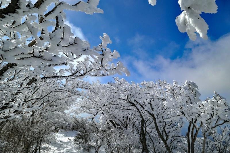 フラチェスカの雪踊り