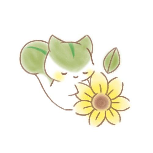 緑 りす ひまわり