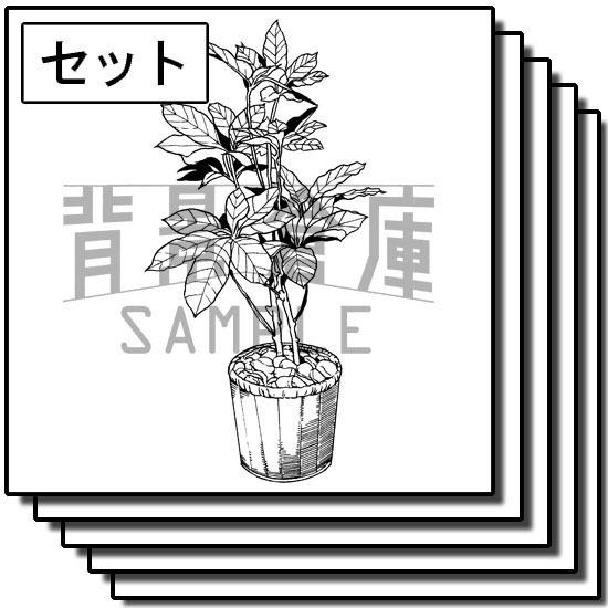自然物の背景集_セット2(観葉植物)