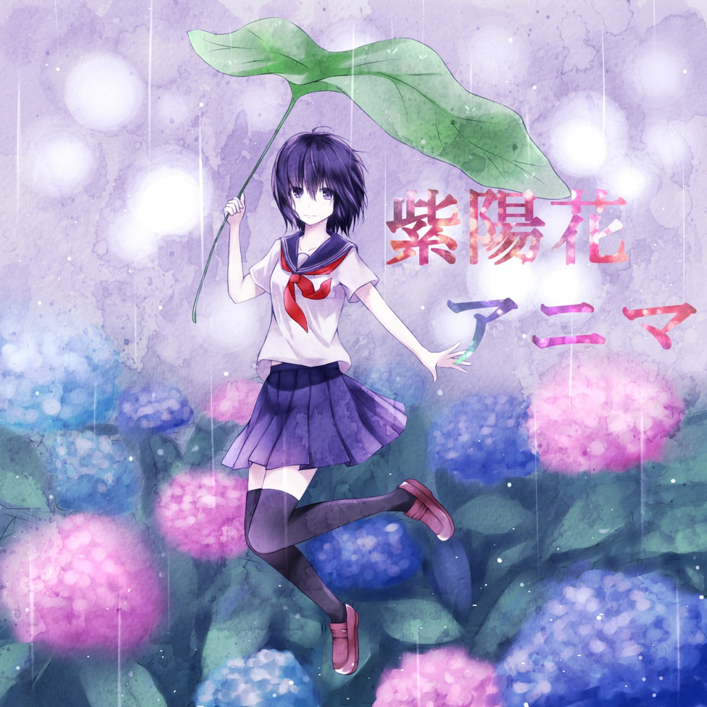 紫陽花アニマ