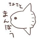 切り絵 満月ノ夜ノ出来事 クリアファイル Saokirie Booth