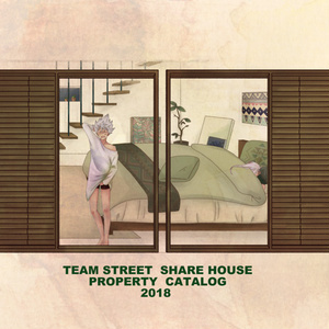 TEAM STREET SHARE HOUSE PROPERTY CATALOG 2018