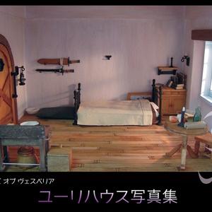 【TOV】ミニチュア/ユーリハウス写真集