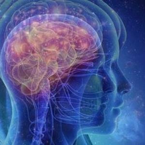 がん転移編|Cancer metastasis.🔴天界とつながるエレメント:Element connected to heavenly world.