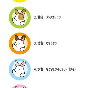 選べるうさぎ缶バッジ(ミニ)