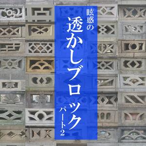 【電子版】眩惑の透かしブロック パート2