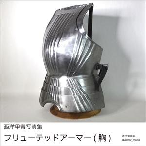 西洋甲冑写真集 フリューテッドアーマー(胸)
