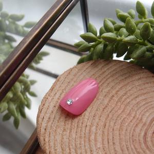 ネイルチップ 普通のピンク 無地10枚セット
