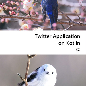 Twitter Application on Kotlin