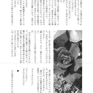 長谷部と北浜街歩き(コピー本)