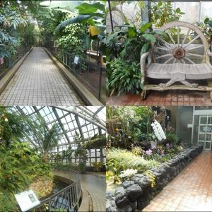 温室の写真素材集