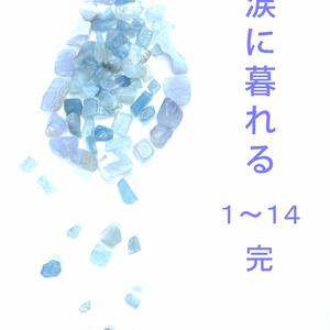 涙に暮れる 01-14 完(ケータイ)