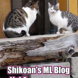 Shikoan's ML Blog -Vol.2-