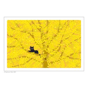 たびねこポストカード(Aセット)