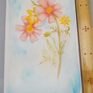 水彩手描き原画◆コスモス