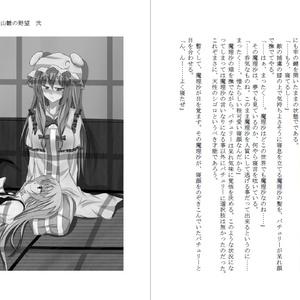 小説 鍵山雛の野望 弐(文庫版)