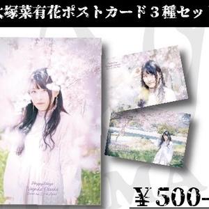 大塚菜有花ポストカード3種セット