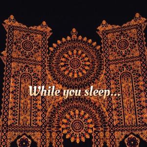 While you sleep...
