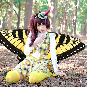 【C81頒布 DL版】Swallowtail