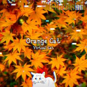 Orange Cat / Virtual Cat 4th Album