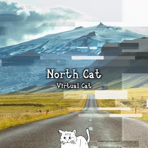 North Cat / Virtual Cat 5th Album