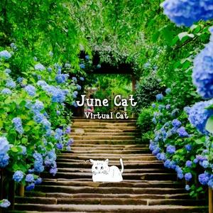 June Cat【デジタルダウンロード版】